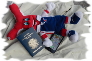 Itens da mala ao chegar ao Brasil